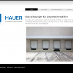 Referenz Hauer Ticketsystem
